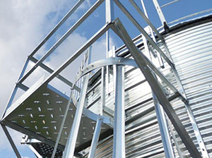 Complete Ladder Systems