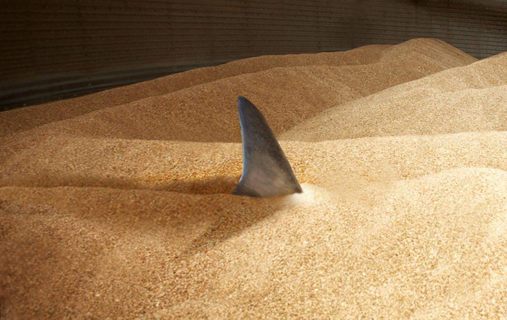 SCAFCO Grain Entrapment Prevention