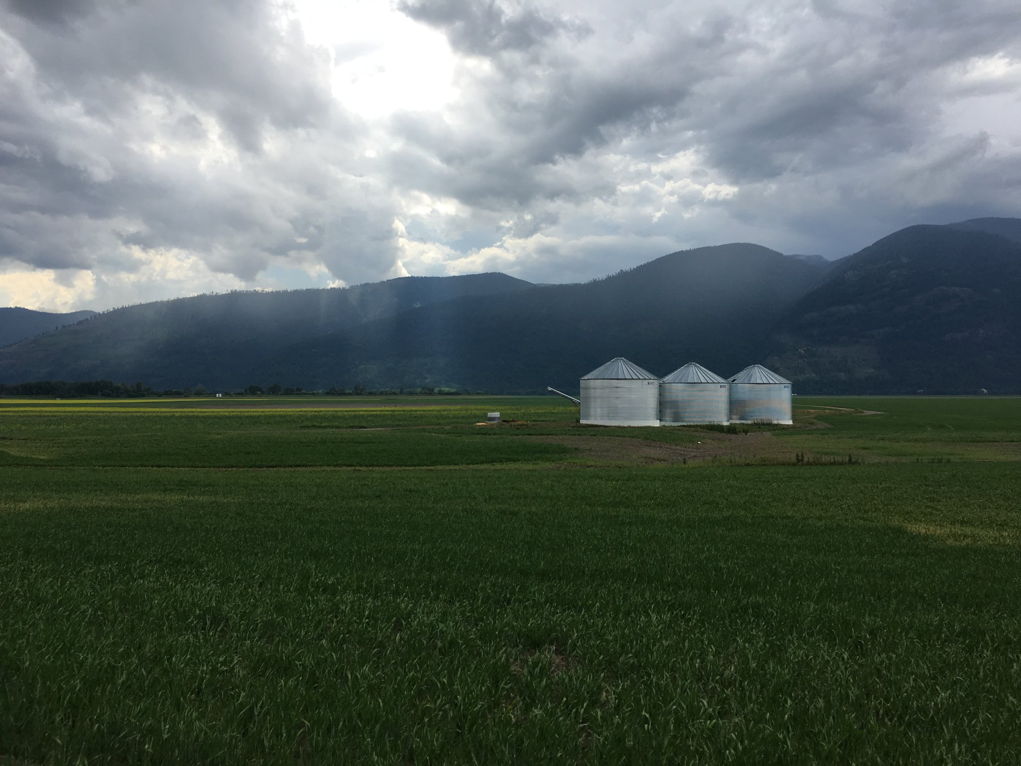 Idaho Farm Bins